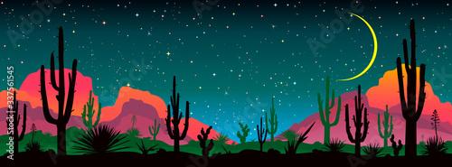 Fotografie, Obraz Night starry sky over the mexican desert