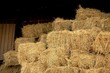 canvas print picture - Close-up Of Hay Bales In Field