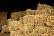 Close-up Of Hay Bales In Field