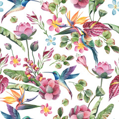 Fototapeta Egzotyczne Watercolor seamless pattern, tropical birds, colibry with flowers and green leaves, yellow and red tropic flowers on white background.