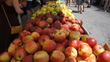 Apple Fruit Market Stall