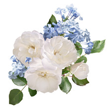 White Roses And Light Blue Plu...