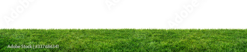 Photo green grass field isolated on white background