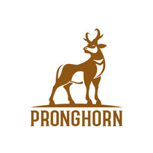 Pronghorn Logo Design