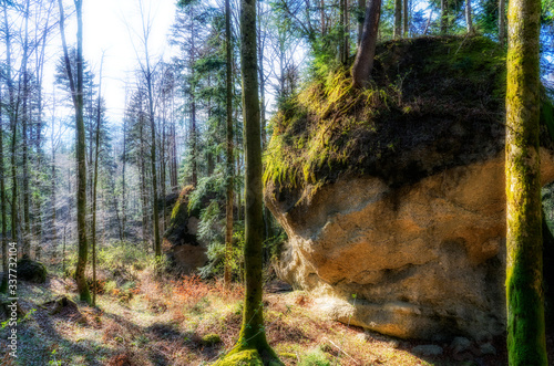 Fotografija mysterious rock formation Entschenstein, a conglomerate stone monolith in the Al