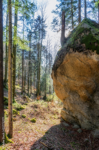 mysterious rock formation Entschenstein, a conglomerate stone monolith in the Al Fototapeta