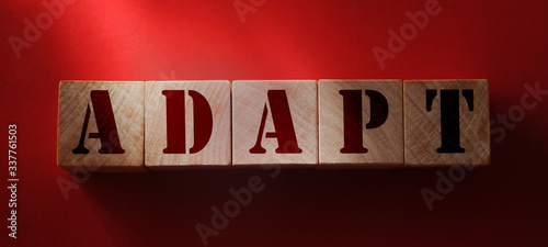 Photo Wooden Blocks with the text: Adapt