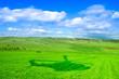 Leinwandbild Motiv Scenic View Of Agricultural Field Against Sky
