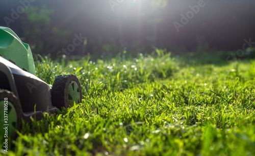 Papel de parede Summer and spring season sunny lawn mowing in the garden.