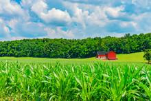 Indiana Red Barn In Rural Farm...