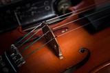 strings on viola bridge musical instrument