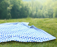 Blue Checkered Picnic Cloth On...