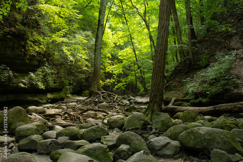 Photo Hiking the sandstone canyons at Matthiessen State Park, Illinois.