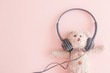 Cute teddy bears in headphones listening to music , A happy and relax mode.