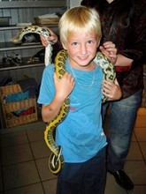 Low Section Of Woman Holding Snake On Teenage Boy Neck