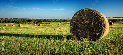 Hay Bales On Field Against Sky - fototapety na wymiar