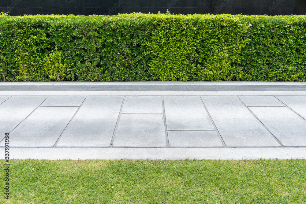 Fototapeta Concrete walkway in the park with green grass,