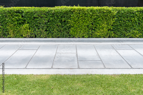 Photo Concrete walkway in the park with green grass,