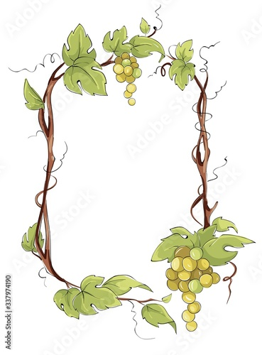 Frame from white grapes. Green grape vine, Vector illustration in watercolor style.  Fototapete