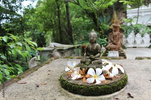 Templo en la jungla Canvas Print