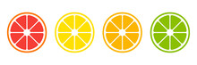 Citrus Slices. Vector Isolated...