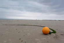 Yellow Marker Buoy With Trailing Rope On A Beach