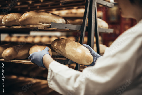 Fototapeta Young female worker working in bakery. She puts bread on shelf. obraz