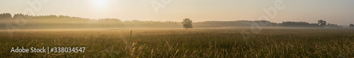 Scenic View Of Field Against Sky During Foggy Weather - fototapety na wymiar