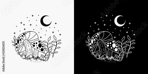 illustration of mushrooms with a view of the moon and stars, merging of mushroom Fototapete