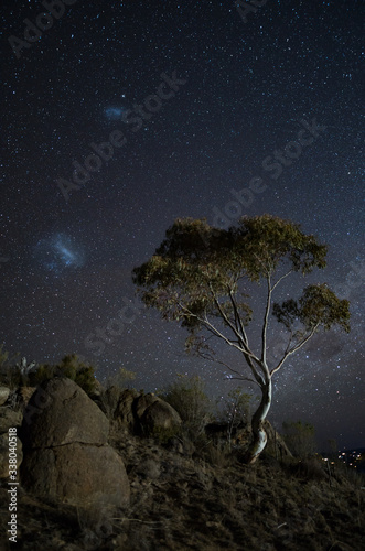 Large and Small magellanic clouds hovering over an Australian gum tree Wallpaper Mural