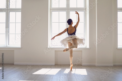 Ballerina Wallpaper Mural