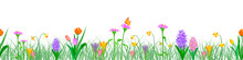 Background Seamless Extendable To Endless Pattern Of Colored Spring Flowers: Hyacinth, Tulip, Crocus, Narcissus. Vector Isolated Illustration On White Background In Flat Style.