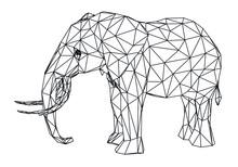 Elephant Polygonal Lines Illus...