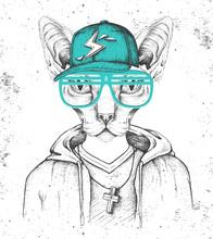 Hipster Animal Sphynx Cat Dres...