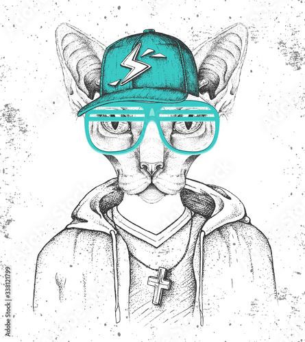 hipster-kot-sfinks-ubrany-w-czapke-jak-raper