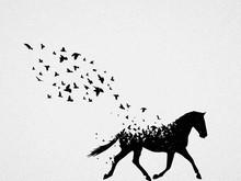 Silhouette Of Running Horse An...