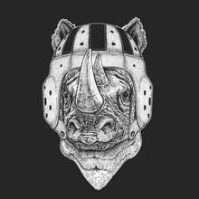 Rhinoceros, Rhino Portrait. Rugby Leather Helmet. Head Of Wild Animal.