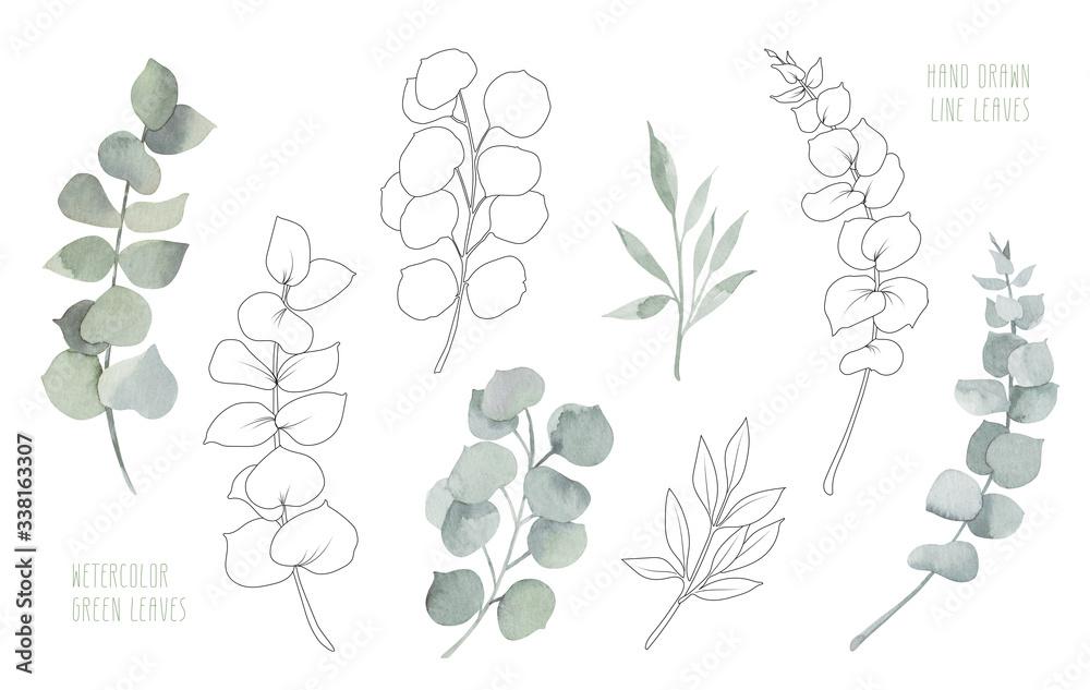 Fototapeta Vintage watercolour Green eucalyptus leaves and hand made line leaves. For greeting, invitation, wedding, birthday card. Botanical illustration