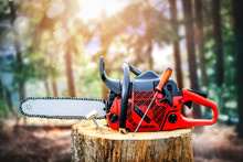 Chainsaw On Wooden Trunk. Woodcutter Man Clean Chain Saw After Work. Hard Wood Working In Forest.