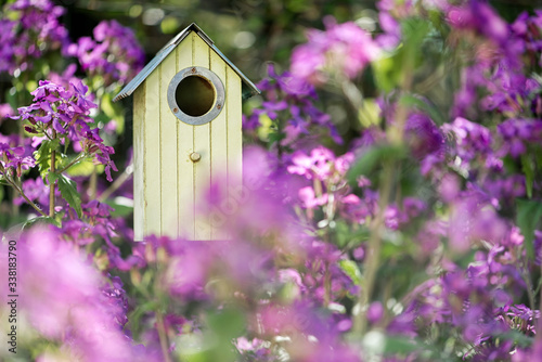 Canvas Birdhouse in spring with flower