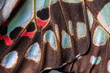 Close up of The Common Jay Butterfly wing detail and texture,The Common Jay Graphium doson axino C & R Felder, 1864