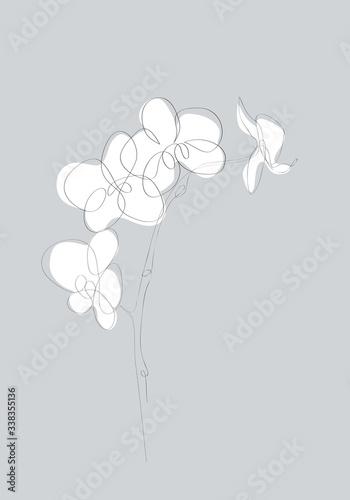 Fotografia Orchid Flower Flat Icon