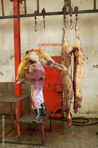 Man moving Cow carcass from scale being weighed at Nyongara slaughterhouse in Na Wallpaper Mural