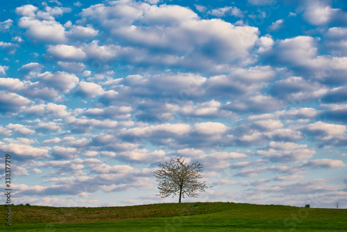 view in a beatiful landscape with blue sky Canvas Print