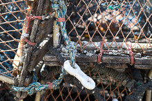 Lobster Creels At The Small Fishing Village Of Staithes