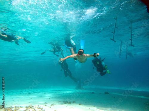 Slika na platnu Free diver swimming underwater over vivid coral reef