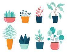 Set Of Different House Plants ...