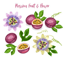 Passion Fruit And Flower Set