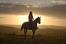 Female Horseback Rider And Hor...