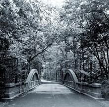 Stone Footbridge In Park